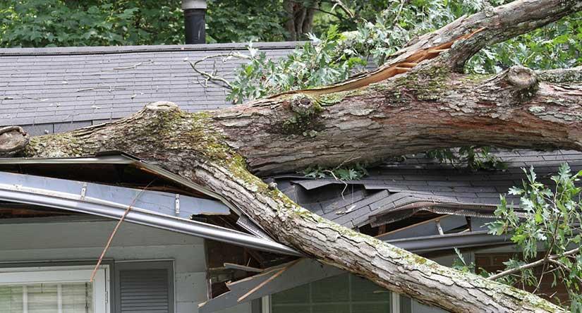 Emergency Roof Repairs in NJ