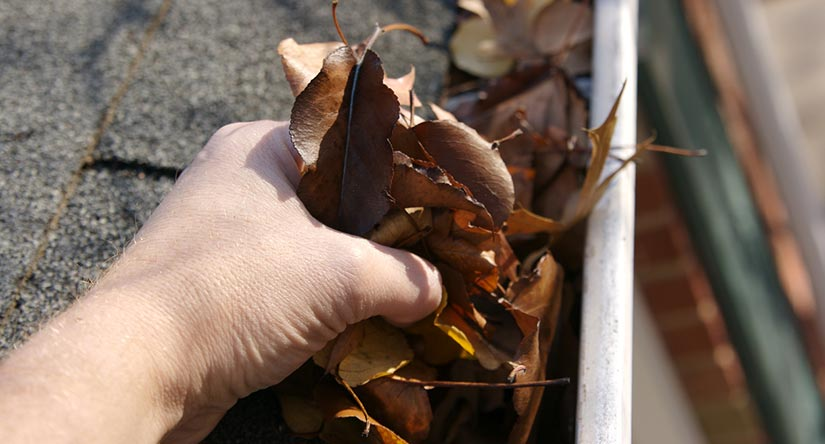 Gutter Cleaning & Repair in Fanwood, NJ