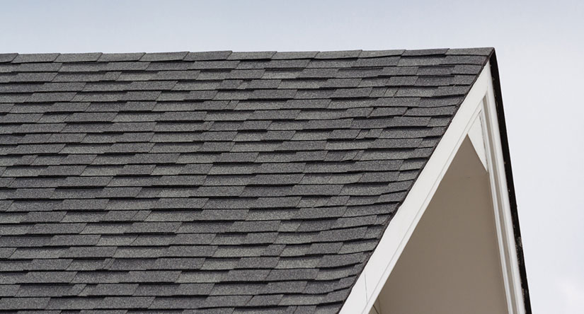 Roof cleaning services in NJ