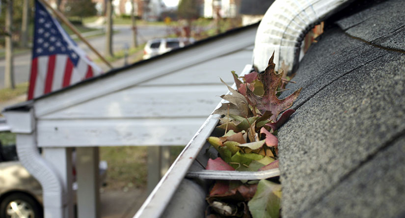 Gutter Cleaning in NJ
