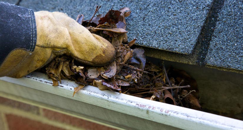 Gutter Cleaning in Summit, NJ