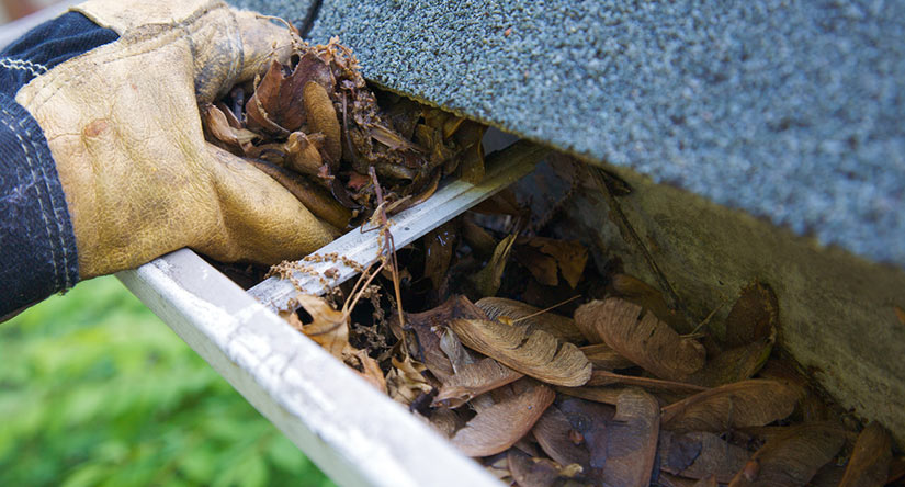 Gutter Cleaning in Scotch Plains, NJ