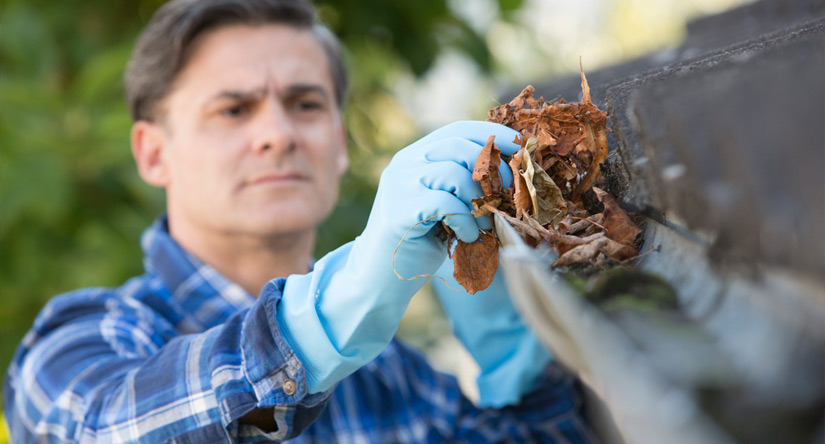 When Should You Clean Your Gutters and Downspouts?