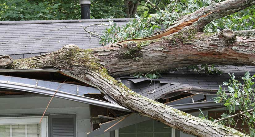 Roof Damage in Westfield, NJ